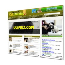 Cat Training Wordpress Blogs + Review Sites (3 Income Streams)