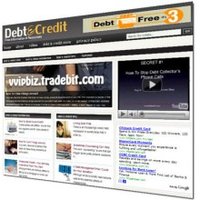 Debt and Credit Niche Wordpress Blogs + Review Sites