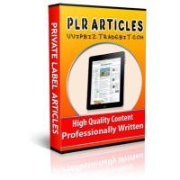 Project Management - 20 High Quality Plr Articles